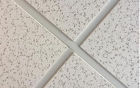 Geluidswerende plafonds